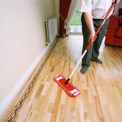 Floor Cleaning and Repair Accessories - Noyeks Newmans
