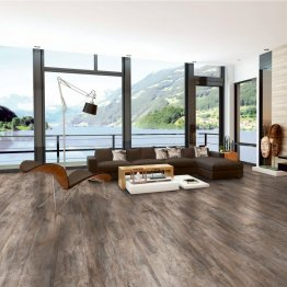 Helvetic Lakeview – Lake Lugano