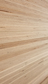 Russian birch plywood - Noyeks Newmans